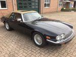 Jaguar XJS V12 te koop